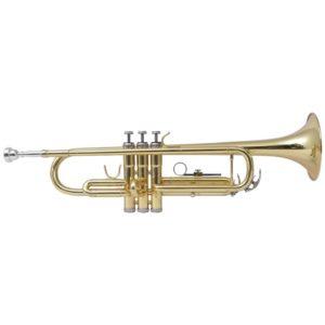 vidaXLi trompet kollane messing, kuldlakiga Bb