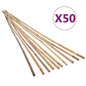 Buum24 bambusvaiad 50 tk 170 cm